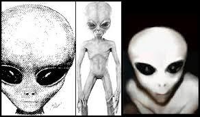alien photo